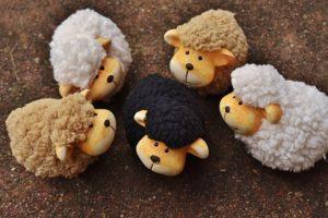 sheep-1767171_640